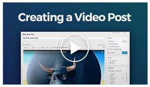 Vlogger - Creating a Simple Post